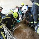 Firefighters help with health check for 83-stone 18-year-old…